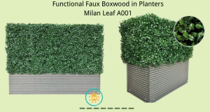 Functional-Faux-Boxwood-in-Planters-Milan-Leaf-A00
