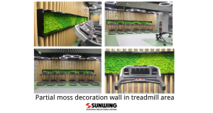 Partial-moss-decoration-wall-in-treadmill-area
