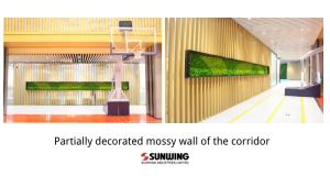 Partially-decorated-mossy-wall-of-the-corridor