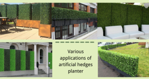 Various-applications-of-artificial-hedges-planter