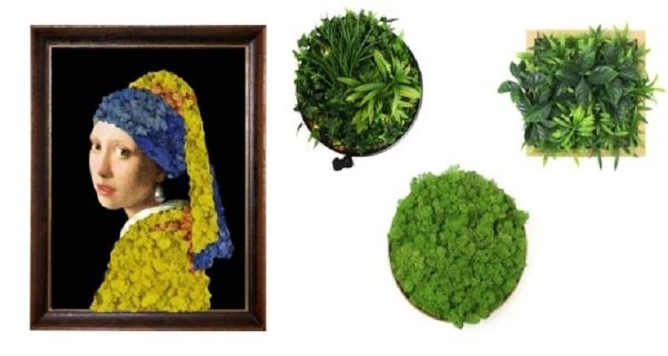 framed-plants-wall-with-different-style